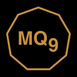 MQ9 [Matrix-Quotient 9] develops and provides solutions for the advancement of Strategic Leadership, Effectiveness & Family-Life-Work Balance.